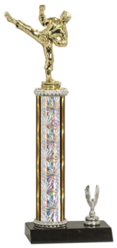MALE MARTIAL ARTS TROPHY