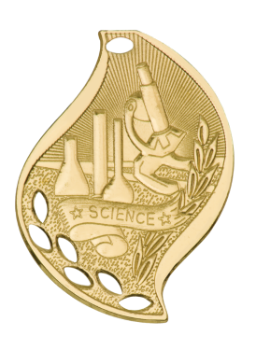 SCIENCE ACADEMIC FLAME MEDAL