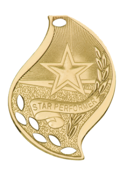 STAR PERFORMER ACADEMIC FLAME MEDAL
