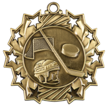 HOCKEY TEN STAR SPORT MEDAL