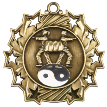 MARTIAL ARTS STAR SPORT MEDAL