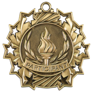 PARTICIPANT TEN STAR ACADEMIC MEDAL