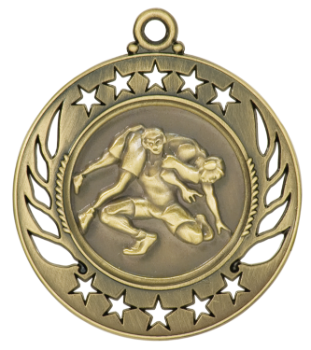 WRESTLING GALAXY MEDAL