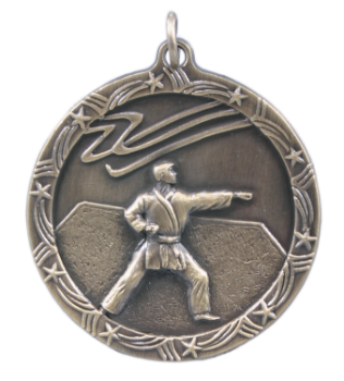 MARTIAL ARTS SHOOTING STAR MEDAL