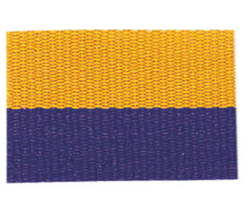 PURPLE/GOLD NECK RIBBON WITH SNAP CLIP