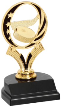 Hockey MidNite Star Trophy