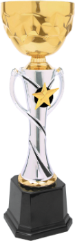 Silver & Gold Metal Cup Trophy