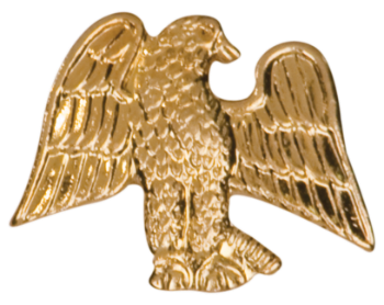 Eagle Chenille Pin