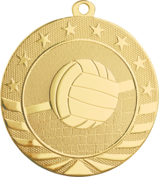 Volleyball Starbrite Medal