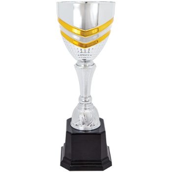 Silver/Gold 11 Completed Metal Cup