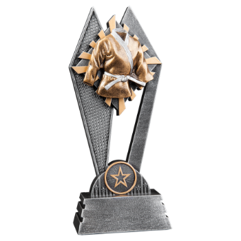 Martial Arts Sun Ray Award
